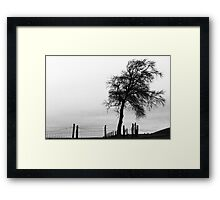 That Naked Tree - Black & White Image of a Winter Tree Gothic Style. Sychdyn, Alltami Framed Print