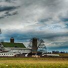 Farmland by rmc314