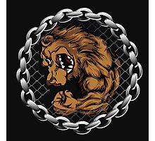 MMA Fighting Bear  Photographic Print