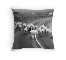 Donegal style Traffic Jam Throw Pillow