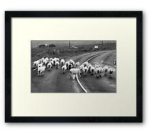 Donegal style Traffic Jam Framed Print