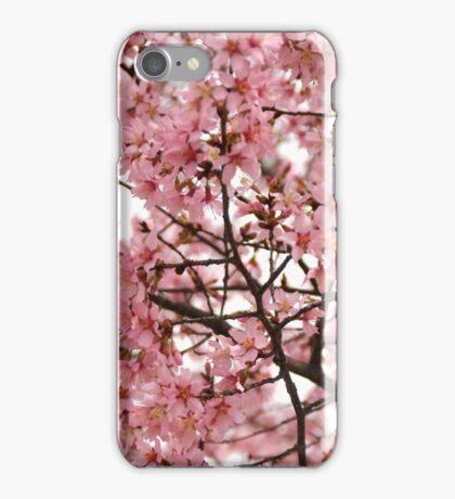 Pink Buds iPhone Case/Skin