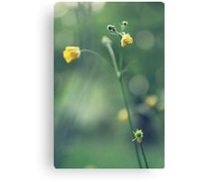Grassland - four Canvas Print