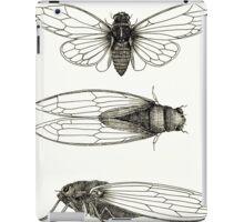 3 sepia Cicadas iPad Case/Skin