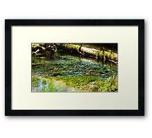 Glacier Water Framed Print