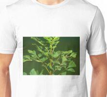 Close up ash tree Unisex T-Shirt