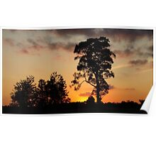 Silverdale Sunset Collection (10) Poster