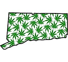 Connecticut (CT) Weed Leaf Pattern Photographic Print