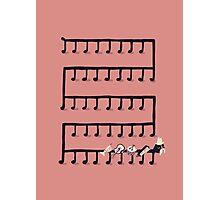 Music Maestro Photographic Print