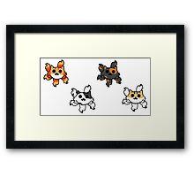 Kitty Buers Framed Print