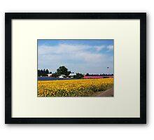 Angel Fields Framed Print