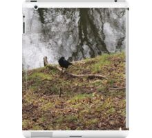 Crow at the Waterside iPad Case/Skin
