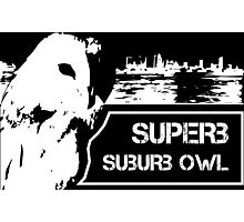 Superb Suberb Owl Photographic Print