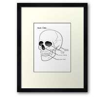 Head Case skull diagram Framed Print