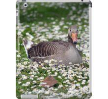 duck among daisies in fota wildlife park near cobh iPad Case/Skin