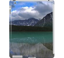 Waterfowl Reflections iPad Case/Skin