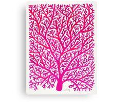Fan Coral – Pink Ombré Canvas Print