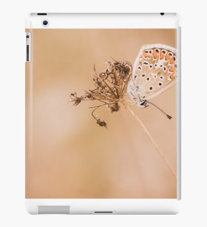 Warm colors iPad Case/Skin
