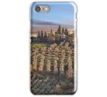 Tuscan Sunset iPhone Case/Skin