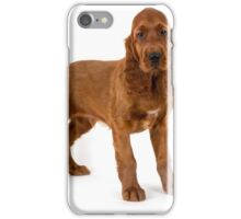 Irish Setter puppy iPhone Case/Skin