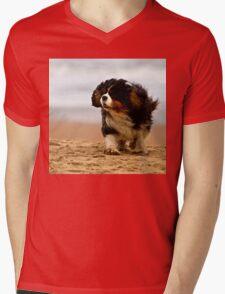 Little dog; windy beach T-Shirt