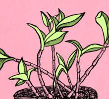 Wonky Flora 2 Sticker