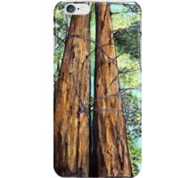 Redwoods for Emma, drawing and watercolor iPhone Case/Skin