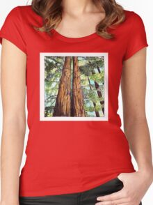 Redwoods for Emma, drawing and watercolor Women's Fitted Scoop T-Shirt