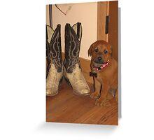 sweet wee pup...  Greeting Card