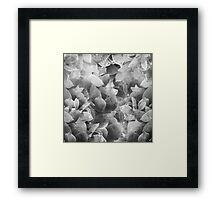 flowers /Agat/  Framed Print