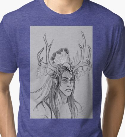 Lord of the Winds Tri-blend T-Shirt