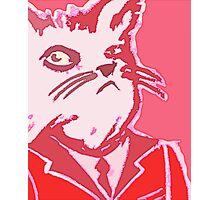 A catman do Photographic Print