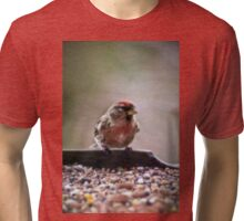 Mealy redpoll Tri-blend T-Shirt