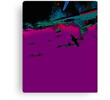 night flight Canvas Print