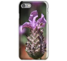 Lavender Close Up iPhone Case/Skin