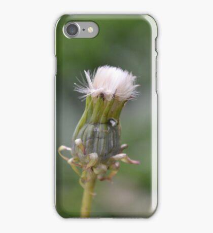 Dandilion iPhone Case/Skin