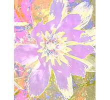 Yes it's a pretty little flower Photographic Print