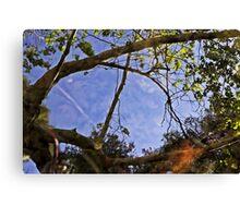 Solstice Canyon V Canvas Print