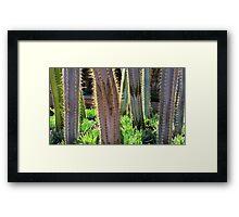 Glowing Cactus Framed Print