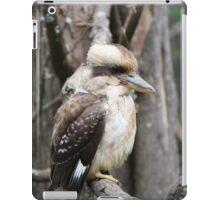 Kookaburra sitting in a tree iPad Case/Skin