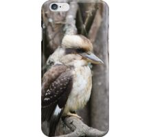 Kookaburra sitting in a tree iPhone Case/Skin