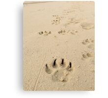 Pawprints Etched into Memory Canvas Print
