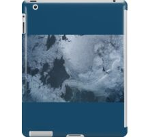 Glacial Patterns iPad Case/Skin