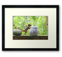 Squirrel and Cookie Jar Framed Print