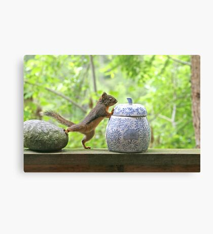 Squirrel and Cookie Jar Canvas Print
