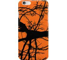 Night Sky Images iPhone Case/Skin