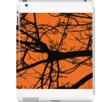 Night Sky Images iPad Case/Skin