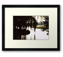 Willow Silouette Framed Print