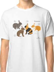 Rabbit colour genetics - Extension gene Classic T-Shirt