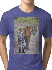 Young Male Tiger Tri-blend T-Shirt